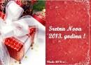 cestika2013